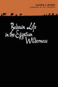 Picture of Bedouin Life in the Egyptian Wilderness